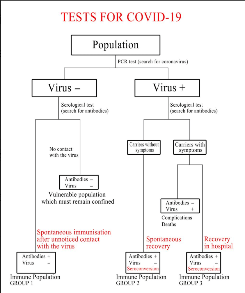 Test for COVID19 diagram